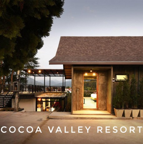 Cocoavalley Group