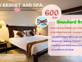 cn-resort-and-spa-phuket-small-1