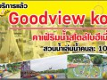 goodview-koff-small-0