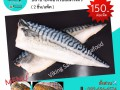 sale-norway-saba-fillet-small-0