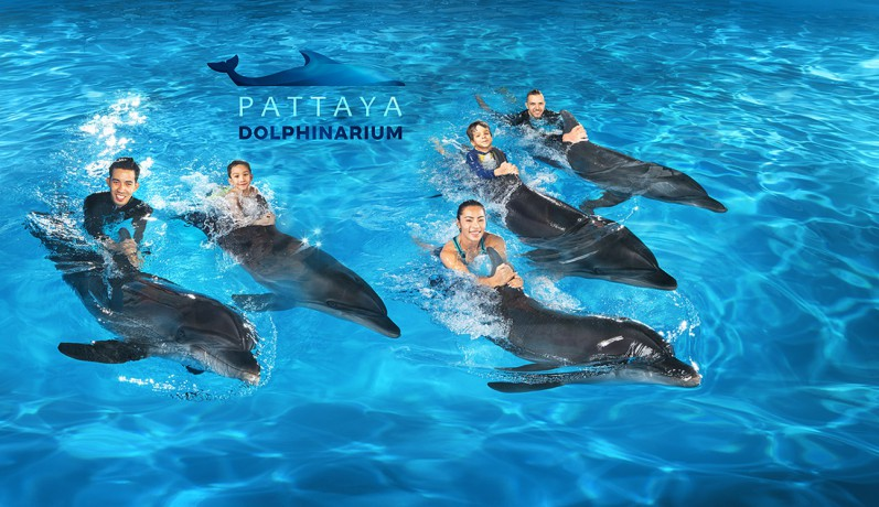 pattaya-dolphinarium-big-1