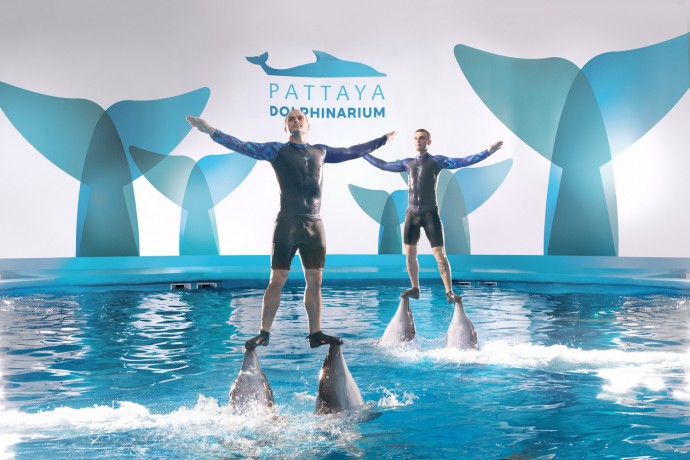 pattaya-dolphinarium-big-0